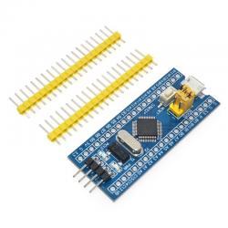 STM8/ STM32 mikrovaldikliai